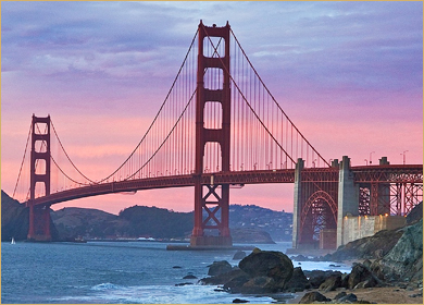 cruise to san fran specialist