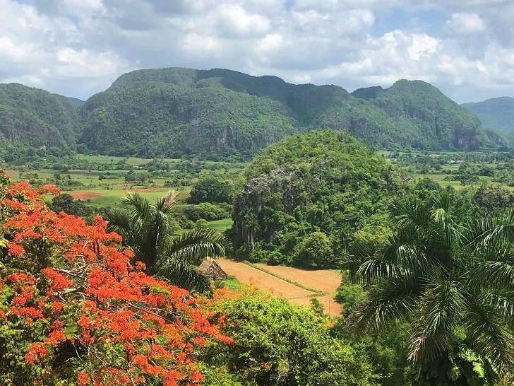 Legal Travel to Cuba, Vinales Valley